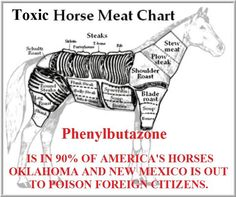 We don't raise our horses as food in the US..