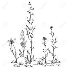 42237087-composici-n-floral-con-hierbas-para-dibujar-con-tinta-flores-y-piedras-doodle-de-plantas-silvestres--Foto-de-archivo.jpg (1300×1300)