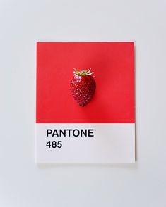 Minimal Object Photography / Pantone Project by Alexandra Diona / Spring / Red Strawberry Pantone 485, Rainbow Project, Shiny Days, Object Photography, Minimal, Strawberry, Spring, Projects, Red