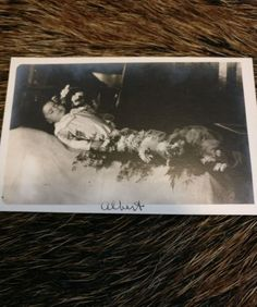 post-mortem-photograph-Albert-dated-and-writing-on-back-Original-postcard-
