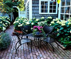 Use Structures  If a house, garage, or other structure casts too much shade in your yard for you to grow grass, create a shady haven instead. Instead of a scraggly side yard, these homeowners created a charming little patio flanked with Annabelle hydrangeas.