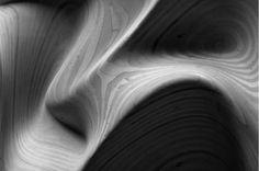 williamson chong - topologies