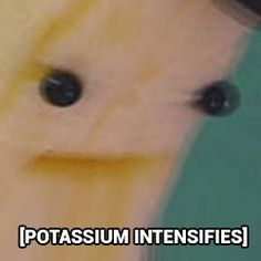 """Potassium Intensifies. From now on, this is what I'm going to send to everyone who replies to me with, """"k."""""""