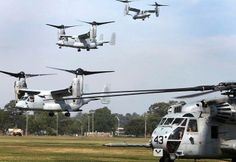 army MV-22B Ospreys and a CH-53E Super Stallion land during training exercises aboard Marine Corps Base Camp Lejeune