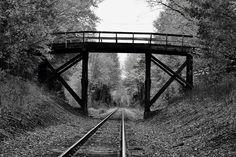 Dry Road Bridge Photo and caption by Kami Kinkead @Smithsonian Magazine
