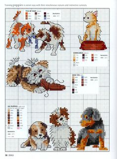 Gallery.ru / Фото #36 - Picture Your Pet in Cross Stitch - patrizia61. Chihuahua, shih Tzu dogs and puppies.