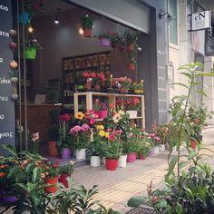 Greenart store,