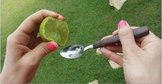 Exprime 1 limón en aceite de oliva, lo que sucede 5 minutos después, seguro nunca dejarás de usarlo - Alimentación con Salud