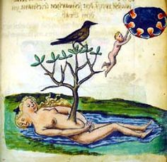 The Rosarium Philosophorum: Image from the Rosarium text of MS Ferguson 6:  a bird sits atop the sprouting tree and the spirit ascends to the higher spiritual area