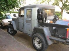 Jeep Pickup, Jeep Jk, Jeep Truck, Pickup Trucks, Jeepster Commando, Willys Wagon, Old Jeep, Sports Sedan, Chevrolet Bel Air