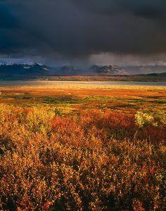 picture of Denali National Park Autumn Clouds Alaska Image
