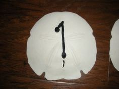 sand dollar table numbers... convenient for your theme lol i have no idea how much sand dollars cost, but this lady wants $75 for 12 of em...