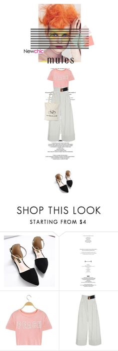 """Newchic X"" by farahhind ❤ liked on Polyvore featuring StyleNanda, TIBI and blockheels"
