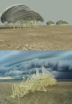 Strandbeest by Theo Jansen - the contraptions walk the beach by the airflow trough the tubes.