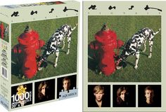 Rush Signals 1000 Piece Jigsaw Puzzle, http://www.amazon.com/dp/B004JLMX2Y/ref=cm_sw_r_pi_awdm_aKyKub1MSEVZB