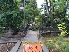 http://www.csuchico.edu/purc/documents/RFQ2014-03SR.pdf  Public art call for bridge design after Gus Manolis Bridge collapse. Submit your qualifications by November 7th.