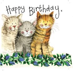 Alex Clark The Three Amigos Cat Birthday Greeting Card Glitter & Sparkle Cats Cat Birthday Memes, Happy Birthday Art, Happy Birthday Wishes Cards, 50th Birthday Cards, Happy Birthday Images, Birthday Pictures, Birthday Greeting Cards, Birthday Cats, Birthday Bunting