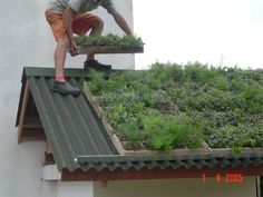 A green roof or living roof is a roof of a building that is partially or completely covered with vegetation and a growing medium, planted over a waterproofing. Earthship, Living Roofs, Living Walls, Earth Homes, Roof Design, House Roof, Green Building, Garden Projects, Garden Design