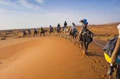 Spending your holiday in Morocco will provide you with the kind of experience  And  an opportunity for journeying and discovery which should not be missed. Visit our website @ www.nomadexperience.com