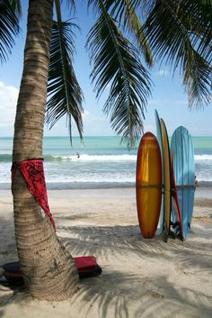 Indonesia surf boards