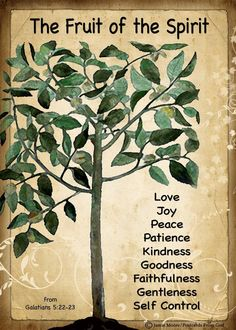 Galatians 5:22-23..let the fruit be seen in all areas of your life, especially care giving.
