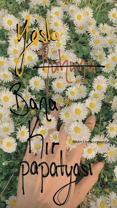Brighton Map, Annual Leave, Tree Templates, Korean Makeup Tutorials, Fake Photo, Pretty Wallpapers, Bts Suga, Autumn Inspiration, Book Nerd