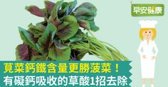【早安健康/林昕潔整理編輯】想要補鈣又補鐵,吃莧菜準沒錯!莧菜是餐桌常見的蔬菜,在台灣全年均有生產。這種家常蔬菜口感較軟,健康價值也很高,有助於促進生長發育,並...