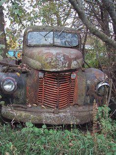 Old International truck Farm Trucks, Cool Trucks, Chevy Trucks, Cool Cars, Diesel Trucks, Semi Trucks, Lifted Trucks, Pickup Trucks, Abandoned Cars