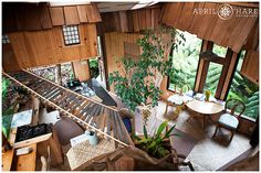 A view from the loft area in Skye's Treehouse in Volcano Hawaii