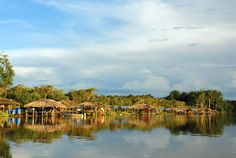 Viviendas Warao en el delta del Orinoco