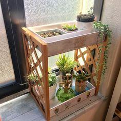 ☆初心者さん向け?!100均簡単プチガーデン☆|LIMIA (リミア) Japanese Living Rooms, Home Greenhouse, Garden Gifts, Diy Storage, Better Homes, Dyi, Wood Projects, Diy And Crafts, Wood Crafts