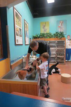 Portland Children's Museum vet clinic