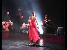 Petenera flamenco ansamble de neta shezaf
