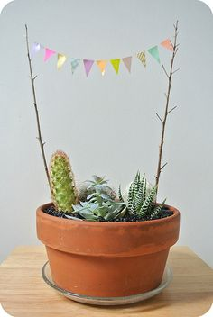 cacti garden with a happy bunting by anastasiart, via Flickr