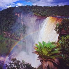 One of my favorite pics of the great Kaieteur  Falls in Guyana