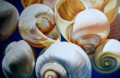 painting of shells - Google Search