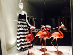 Palm Beach Flamingo Summer Window Display