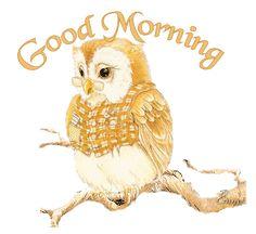Good Morning GIF Animation | Bilder » Eule Bilder