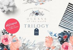 Oceans of the World Trilogy by OpiaDesigns on @creativemarket