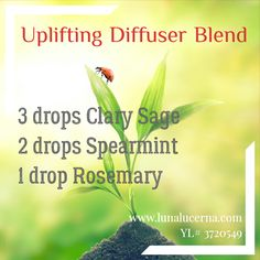 Try this blend any time of year for a mood boost!