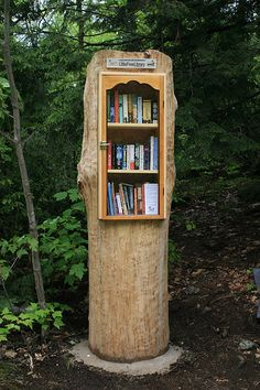 Ontario, Canada--You may not be able to see that the library bookself is inserted into a hollow tree.