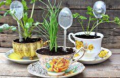 flower. tea cup~