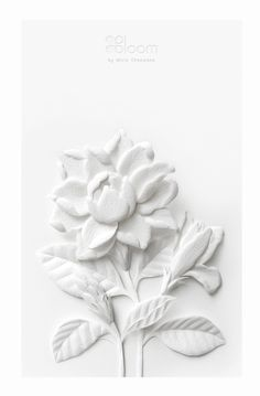Paper Sculpture : White Thai Flowers by Wirin Chaowana, via Behance