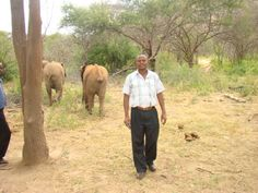 A leisure Walk in my native land Tropical wildlife filled Kenya in East-Africa East Africa, Kenya, Insight, Wildlife, Elephant, Tropical, Author, Blog, Animals
