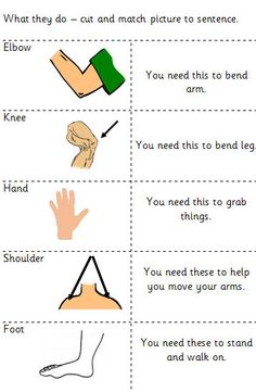 math worksheet : body parts worksheet can use as a dictionary to label ...