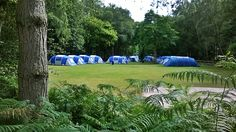 summer camp Forest Camp, Golf Courses, Camping, Summer, Campsite, Outdoor Camping, Campers, Rv Camping, Summer Time