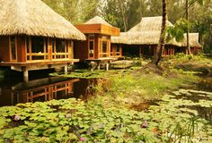 Manea Spa Bora Environment