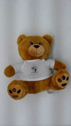 Hello, I'm Bright Spark the teddy bear and I'll be a great addition to your promotional merchandise project. Available with plain t-shirt ready for your logo.  #brandedteddybear #promotionalplush #charitybear #promotionalproducts