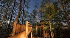 Lombok, Travel Goals, Garden Bridge, Budapest, Outdoor Structures, Outdoor Decor, Plants, Plant, Planets