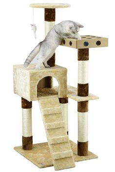 Go Pet Club IQ Busy Box Cat Tree 21 x 22 x 52 *** See this wonderful product. (This is an affiliate link ). Cat Tree House, Cat Activity, Cat Perch, Wood Cat, Busy Boxes, Sisal Rope, Cat Condo, Leather Pouf, Large Animals